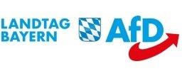 AfD-Fraktion_im_bayerischen_Landtag